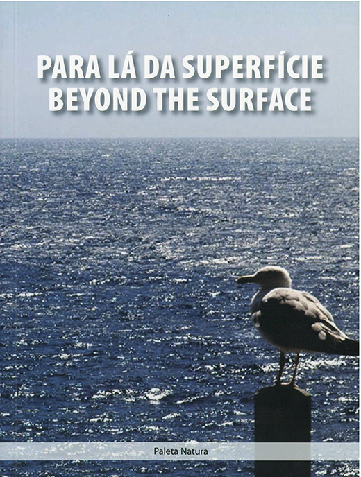 Para lá da superfície/ Beyond the surface