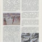O Projecto Life+ MARPO – conservação de espécies marinhas protegidas em Portugal continental