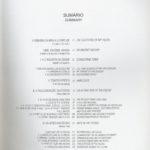 A Romaria da Srª da Agonia – vida e memória da cidade de Viana
