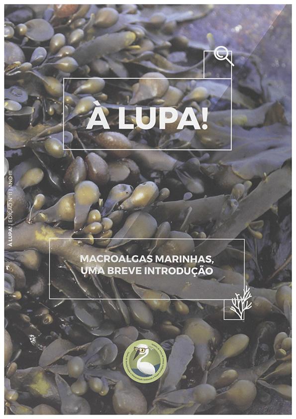 À LUPA – Macroalgas marinhas, uma breve introdução; nº11 | ano III