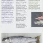 Estado de conservação e ameaças das espécies de peixes migradores – truta