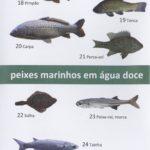 Pequeno Atlas do rio Minho – peixes que vivem em água doce