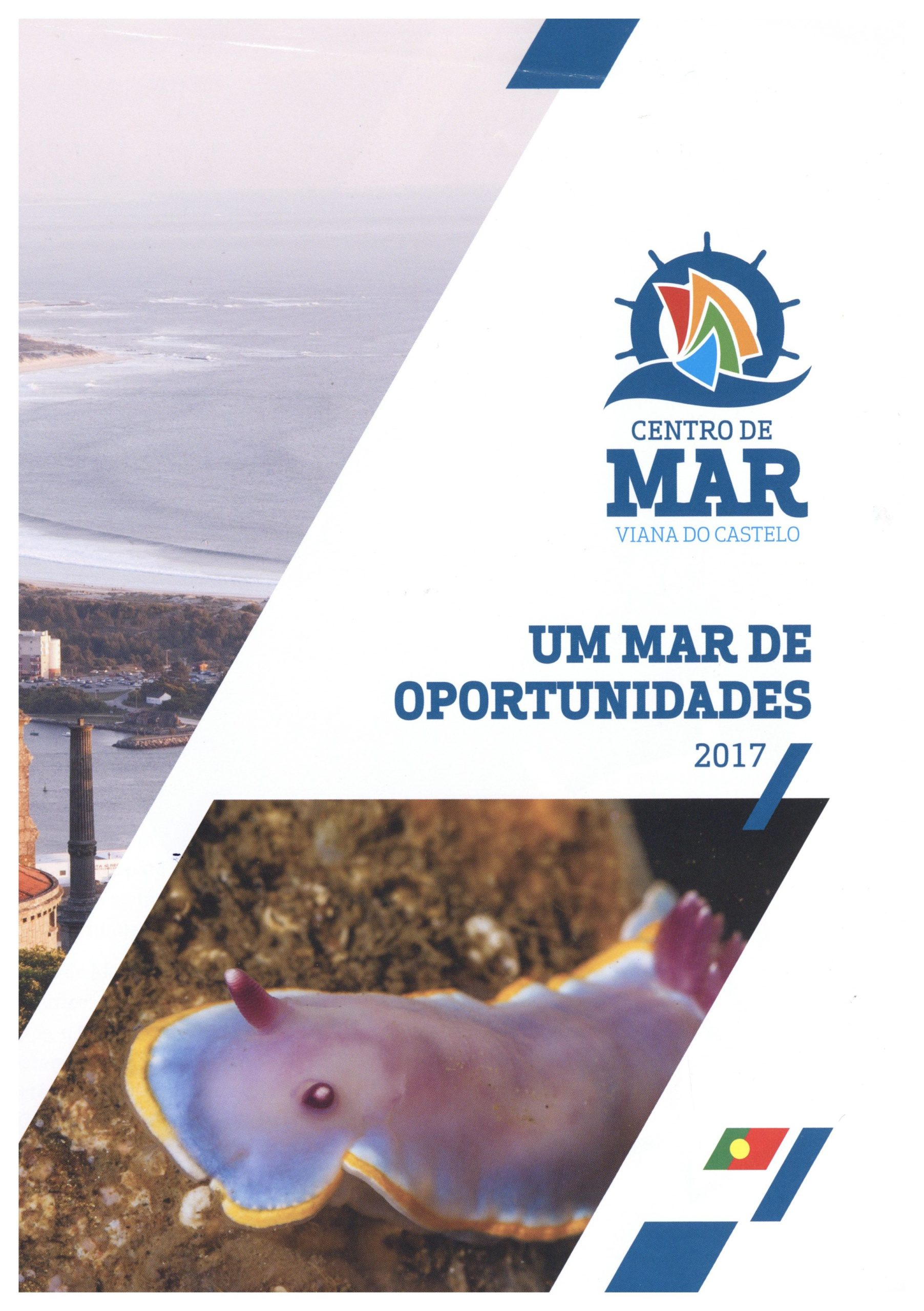 Um mar de oportunidades 2017