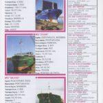 Porto de Mar Viana do Castelo – boletim de divulgação do porto de mar de Viana do Castelo, n.º36