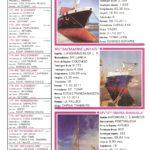 Porto de Mar Viana do Castelo – boletim de divulgação do porto de mar de Viana do Castelo – n.º58