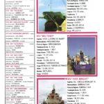 Porto de Mar Viana do Castelo – boletim de divulgação do porto de mar de Viana do Castelo – n.º89