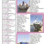 Porto de Mar Viana do Castelo – boletim de divulgação do porto de mar de Viana do Castelo – n.º91