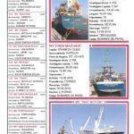 Porto de Mar Viana do Castelo – boletim de divulgação do porto de mar de Viana do Castelo – n.º116