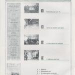 Roda do Leme, ano 4 – n.º36 (3ªsérie)