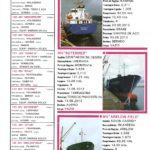 Porto de Mar Viana do Castelo – boletim de divulgação do porto de mar de Viana do Castelo – n.º80