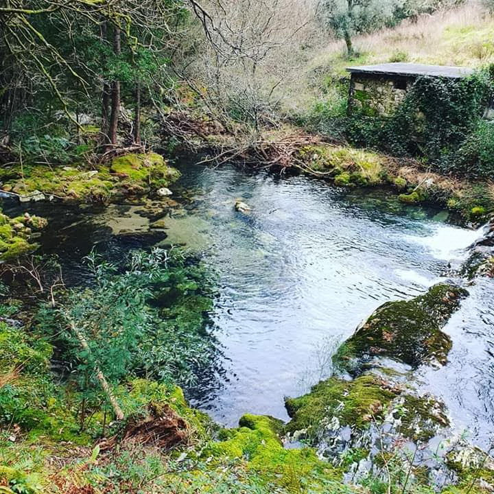 Rios, regatos, charcos, pontes, fontes, presas, quedas de água…
