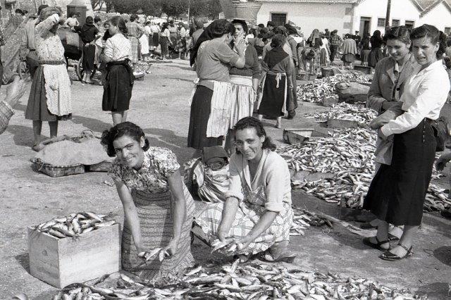 Peixeiras num dia típico de faina